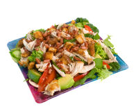 Warm Chicken Salad. On serving plate isolated over white background Royalty Free Stock Photos