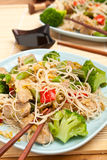 Warm Chinese salad with rice noodles Royalty Free Stock Photo