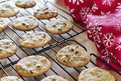 Warm chocolate chip cookies cooling on wire racks Royalty Free Stock Image