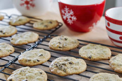 Warm chocolate chip cookies cooling on wire racks Royalty Free Stock Photos