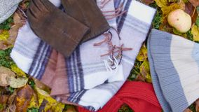 Warm clothing and accessories