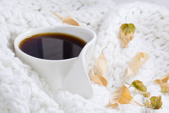 Warm coffee white mug. Covered with blanket Stock Images