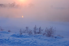 Warm cold winter sunset. Last rays of setting sun coloring the fog golden in this winter sunset Royalty Free Stock Image