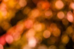 Warm colors bokeh Royalty Free Stock Photos
