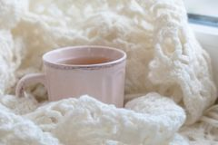 Cozy winter still life: opened book. Warm and comfy autumn or winter concept. Warm and comfy autumn or winter concept. Book, cup of lemon tea and sweater on Royalty Free Stock Photos