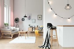 Warm and comfy loft interior. With living room and kitchen Royalty Free Stock Image
