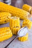 Warm corn on the cob, sliced, teaspoon of salt Royalty Free Stock Photos