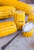 Warm corn on the cob, sliced, teaspoon of salt Stock Photo