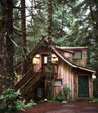 A warm cozy cabin in the rain forest of Alaska near Seward
