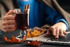 Warm cup of hot mulled wine warming in the hands of a girl Royalty Free Stock Image
