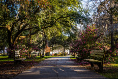 A Warm day at Forsyth Park in Savannah, Georgia Shaded by Magnolia Trees royalty free stock images
