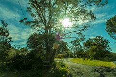 Warm day with sunshine Royalty Free Stock Photography