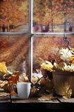 Warm Drink Fall Morning Royalty Free Stock Photos