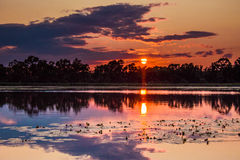 Warm evening. Summer sunset on a pond on a warm evening royalty free stock photography