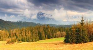 Warm evening in Tatras. Evening mountain landscape. Warm evening in Tatras. Picturesque sunset over summer valley. Sun illuminate forest at Tatras foothills stock image