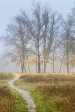 Warm Fall : Morning fog Stock Photos