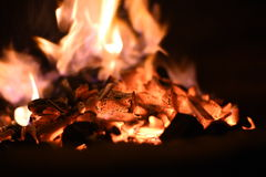 A warm fire. A fire sparkling away, soon to become a nice bed of coals for a bbq Royalty Free Stock Images