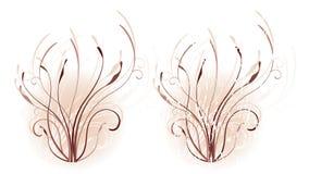 Warm Floral Motif Stock Image