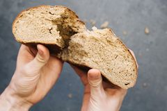 Warm, freshly rye bread. Cut the slices. Tear off a piece with your hands. Farm food made from flour and eggs. Warm, freshly rye bread. Cut the slices. Tear off Royalty Free Stock Images