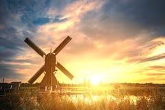 Warm giant Dutchman Stock Image