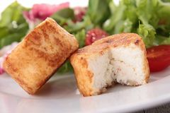 Warm goat cheese Royalty Free Stock Photography