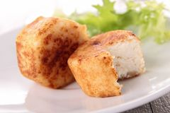 Warm goat cheese and salad Royalty Free Stock Photography
