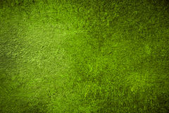 Warm Green Painted Background Stock Images