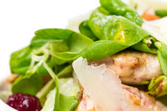 Warm grilled chicken salad with parmesan. Warm grilled chicken salad with parmesan and fresh corn salad. Macro. Photo can be used as a whole background Stock Image