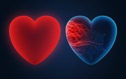Warm hart Royalty-vrije Stock Afbeelding