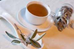 Warm herbal tea on a winters day Royalty Free Stock Photo