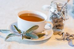 Warm herbal tea on a winters day Stock Images