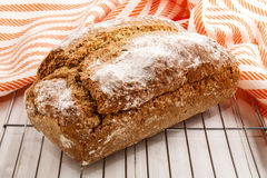 Warm home baked bread on a cooling rack Stock Image