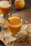 Warm Hot Apple Cider Royalty Free Stock Image