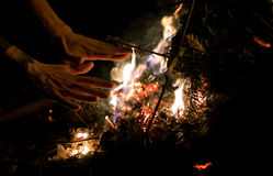 Warm. Keep me warm by the fire in the forest Royalty Free Stock Photography