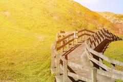 Warm licht beeld van de houten manier van de weggang langs de heuvel Stock Afbeelding