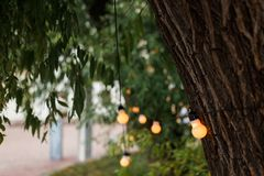 Warm light bulbs at the evening event. String wired with warming Light Bulbs hanging in the area of wedding events celebration in the night royalty free stock photo