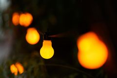 Warm light bulbs at the evening event. String wired with warming Light Bulbs hanging in the area of wedding events celebration in the night royalty free stock images