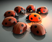Warm light magnetism. Ladybugs, one of them is glowing like a lamp, red and warm. 3D rendered image Royalty Free Stock Photo