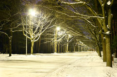 Warm light in the night alley Royalty Free Stock Images