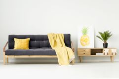 Warm living room with blanket. Warm living room interior with pineapple poster on a wooden cupboard and yellow blanket on black couch Royalty Free Stock Photography