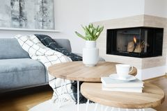 Free Warm Living Room With Fireplace Royalty Free Stock Image - 119421226