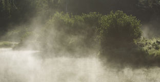 Warm morning light foggy view Royalty Free Stock Image