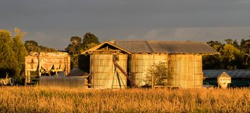 Old Farm Silos. Warm morning light on these old farm silos Stock Photography