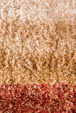 Warm multi-colored striped carpet for background. Warm multi-colored striped carpet for background Royalty Free Stock Photos