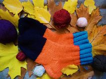 Warm multi-colored woolen socks and autumn leaves.  Royalty Free Stock Photos