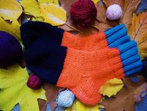 Warm multi-colored woolen socks and autumn leaves.  Stock Photography