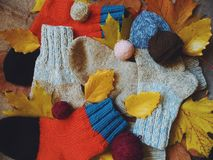 Warm multi-colored woolen socks and autumn leaves.  Royalty Free Stock Image