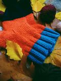 Warm multi-colored woolen socks and autumn leaves.  Royalty Free Stock Images