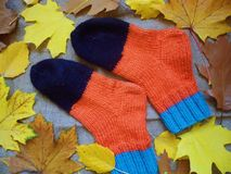 Warm multi-colored woolen socks and autumn leaves.  Royalty Free Stock Photography