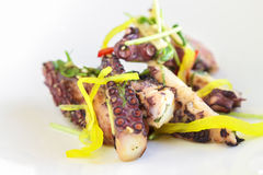 Warm Octopus Salad Royalty Free Stock Images